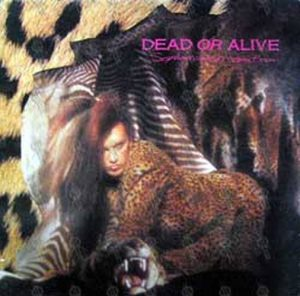 DEAD OR ALIVE - Sophisticated Boom Boom - 1