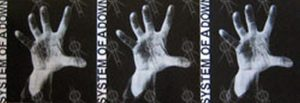 """SYSTEM OF A DOWN - Tri-Fold 'System Of A Down' 12"""" Album Flat - 1"""