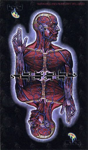 TOOL - 'Lateralus Man Mirrored' Image Sticker - 1