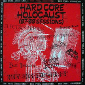 VARIOUS ARTISTS - Hardcore Holocaust (87/88 Sessions) - 1