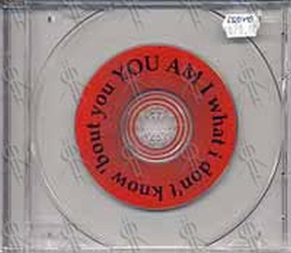 YOU AM I - What I Don't Know About You - 1